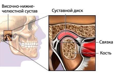 Нижньощелеповий суглоб