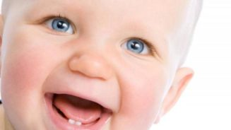 Первый зуб