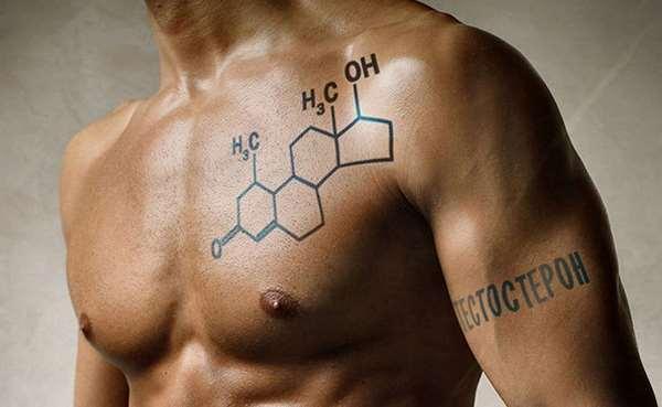 тестостерон в организме мужчины