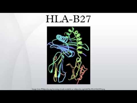 ген HLA-827